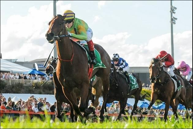 Dr Drill wins Cranbourne Cup