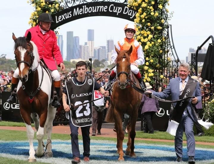 Jockey Craig Williams celebrates 'surreal' Melbourne Cup win