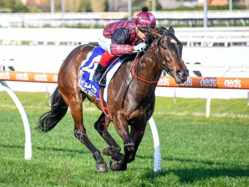 Felicia races to impressive Caulfield win