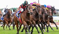 September Run's Coolmore Stud Stakes