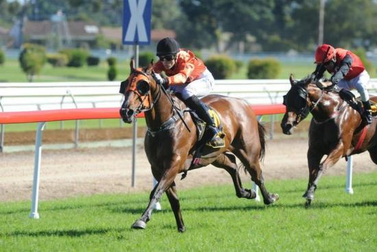 The Prince Burns The Grass At Grafton