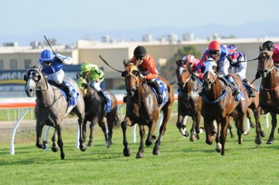 Dubawi Double For Val