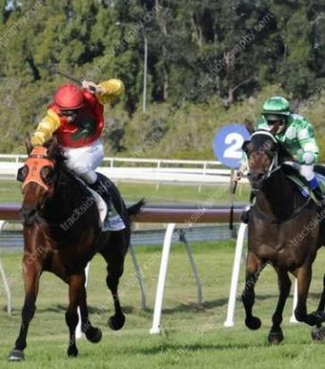 Code Red Wins At Lismore