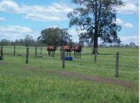 Horse Ridges Farm