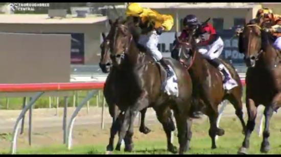 Profiler Catches The Eye At The Gold Coast