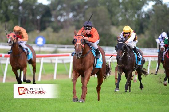 Ballina Double for Hydrazine and Call us Primi