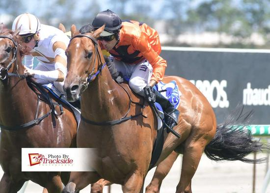 Alatora's Fast Finish Makes It Four Wins For The Week