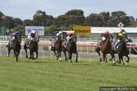 Some run for the stable and in particular for Parousia