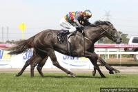 Two weeks and counting to the SA Oaks