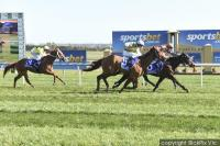 Tough win by well bred filly