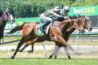 Hunamosa salutes at our favourite track for the new Romsey stable
