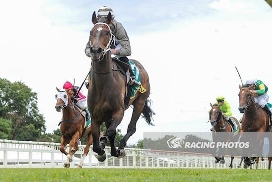 Wildwood Jade wins in fine style on debut