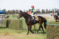 FOUND MY WAY IN WINNING FORM AT MILDURA