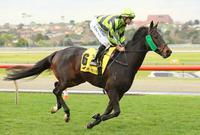 THE CONQUEROR LIVES UP TO HIS NAME AT MURTOA