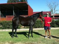 LUCKY NEW OWNER GARY WILKINSON WINS SHARE IN LUCAS CRANACH FILLY