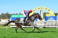 EXCITEMENT WINS AT BENDIGO