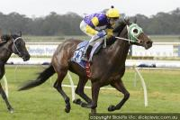 Star Impulse back to best in Bendigo romp
