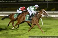 The Blonde Alibi steams to Cranbourne victory