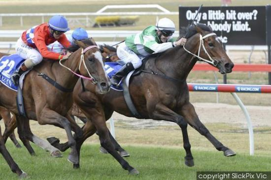 Front running win for Miss Famous