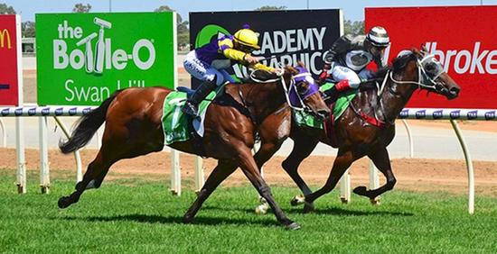 Horsebetting.com.au story on Sintara