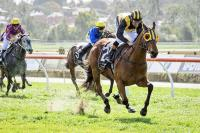 Skellig Makes the jump to distance racing