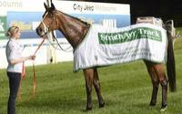 Hopes hunting Cox Plate