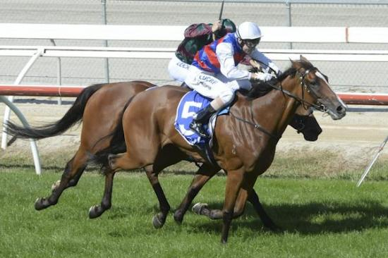 Miss Hissy strikes at Kilmore