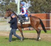 Tatura Trial May 16 2016 013.jpg