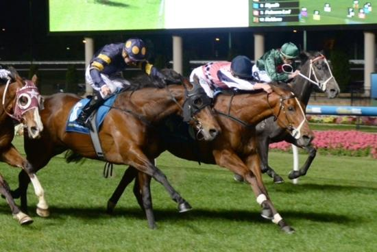 Prima produces at the Valley