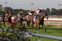 kilmoreraces18may2017 363 (640x428).jpg