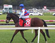 Sandown May 16 2018 095.jpg