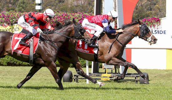 Super SUPRE Salutes at Sandown