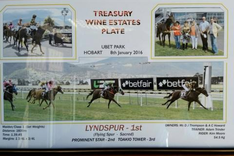 Lynspur wins easily at Tattersall's Park Hobart