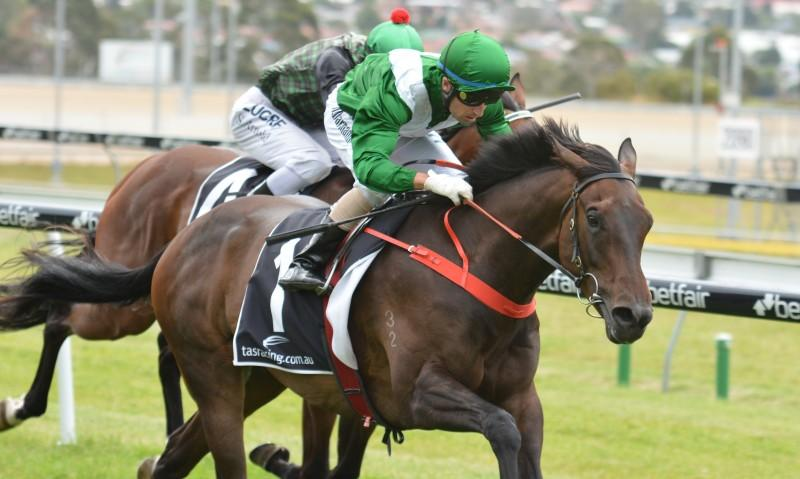 TASMANIA RAIDER JERILDERIE LETTER SEEKING FLEMINGTON SUCCESS