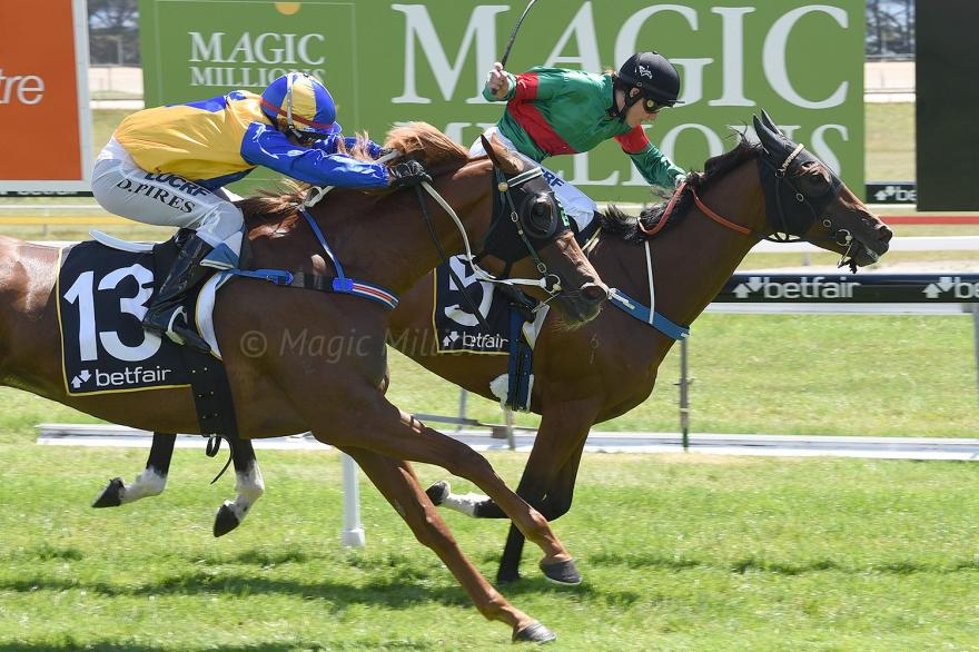 Bidirectional Sizzles in Hobart to win on Cup Day