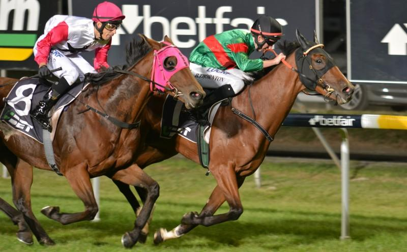 Trinder aiming for trainer's premiership