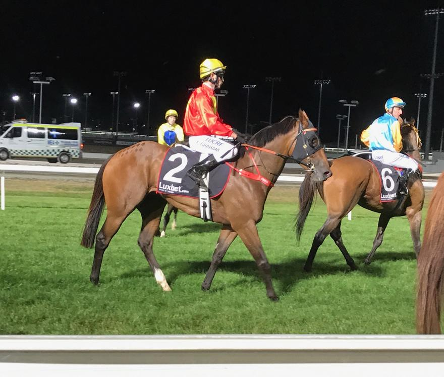 Harvey Bay makes it win number Five