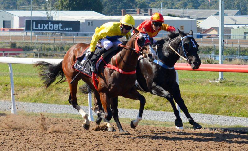 Gasnier wins on Debut