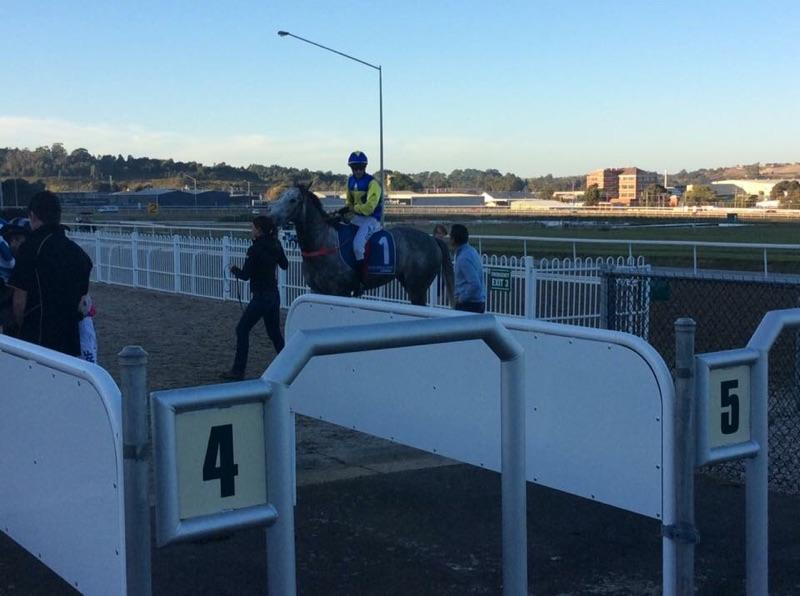 Steel Moon wins to give Trinder Racing a double at Devonport