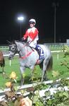 Silver Bolt's in to make it four wins for the night