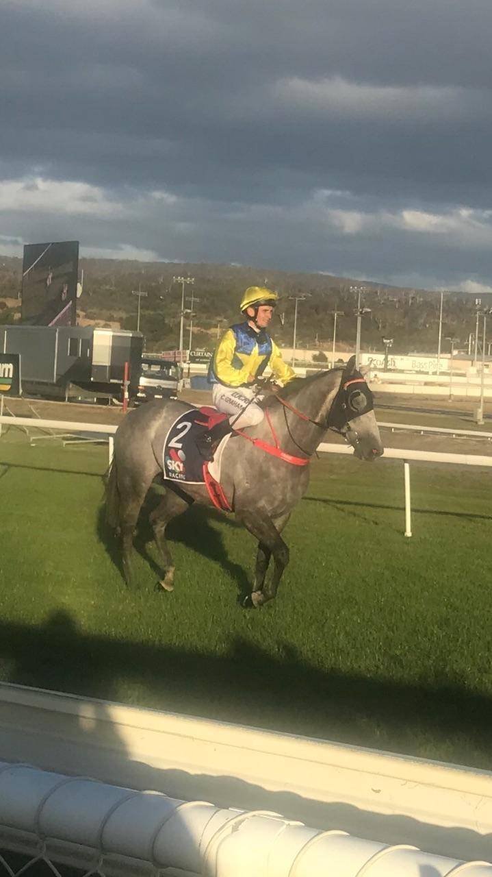 Steel Dan pounces late to win the BM 58 1200 Launceston