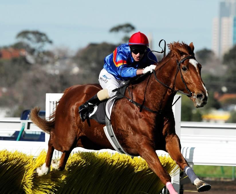 Former top jump jockey Adam Trinder finds success in Tasmania