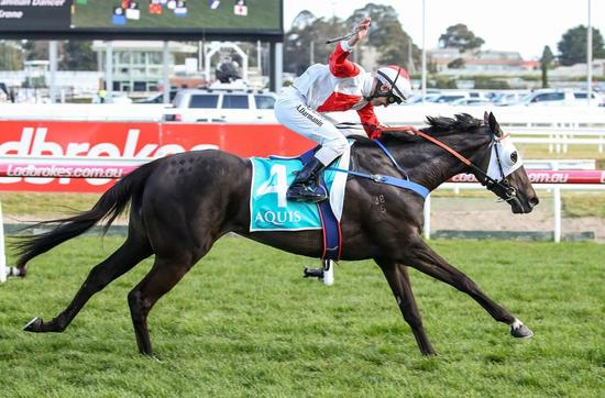 Mystic Journey gives Devonport trainer Adam Trinder first stakes win in Melbourne