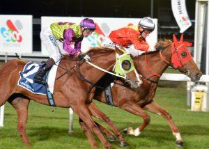 Dothraki Princess wins Race 8  Nextra Kings Meadows News & Lotto Class 3 Hcp (1420 METRES)