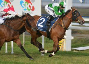 Voices wins - JANSZ Corporate Marquee Launceston Cup Day Benchmark 58 Hcp (1600