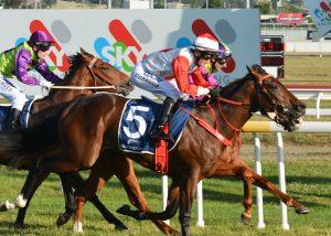 Mystical Pursuit wins - Cressy Chaff Cutters Longford Cup New Year's Day 2YO Maiden (1100 METRES)