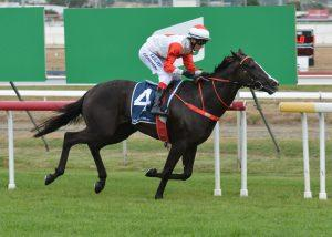 Race 1 Balmoral on York Maiden (1400 metres)