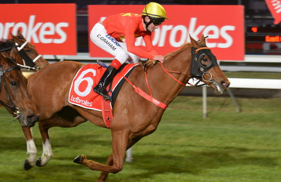 Tough Boy picks up Tasbred bonus