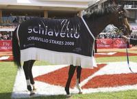 2008 Schiavello Stakes LR.jpg