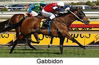 Gabbidon - 2007 Thousand Guineas Prelude (F) GR3.jpg